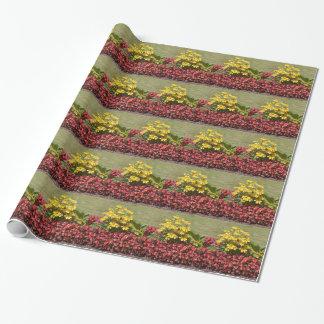 Macizo de flores de coneflowers y de begonias papel de regalo