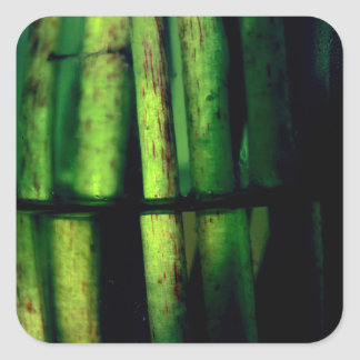 Macro verde pegatina cuadrada