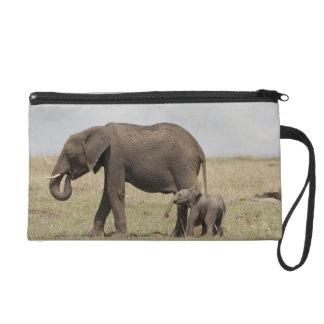 Madre del elefante africano con caminar del bebé