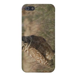 Madriguera del búho iPhone 5 cárcasas