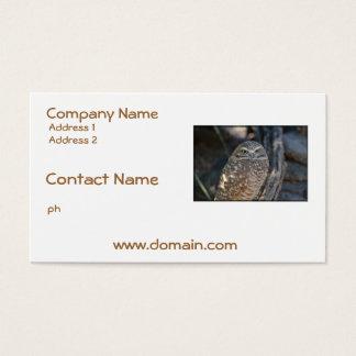 Madriguera del búho tarjeta de negocios