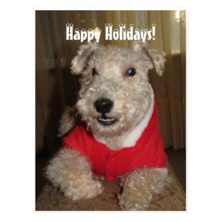 Maestro las tarjetas de Navidad de Lakeland Postal