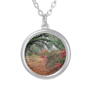 Magnolia Charleston de los robles de las azaleas d Joyerías