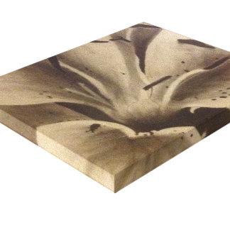 Magnolia en carbón de leña impresión en lienzo