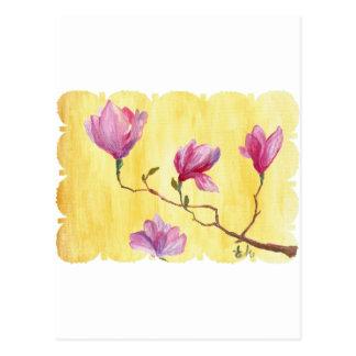 magnolia postal