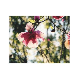 Magnolia rosada - tropical - arte de la lona