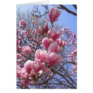 magnolias rosadas tarjeta