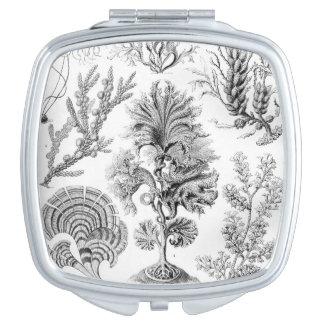 ¡Malas hierbas de Ernst Haeckel Fucoideae! Espejo De Maquillaje