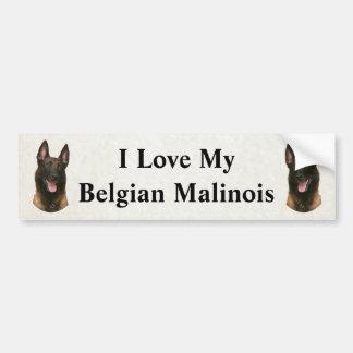 malinois belgas pegatina para coche