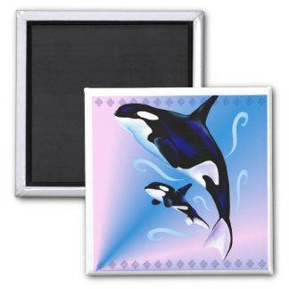 Mamá de la orca e imán del bebé