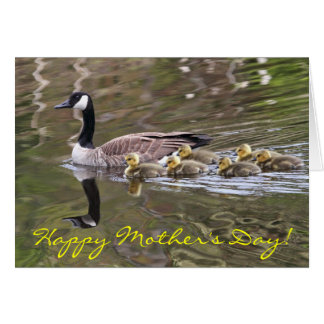Mamá ganso y foto de los gansos del bebé tarjeta