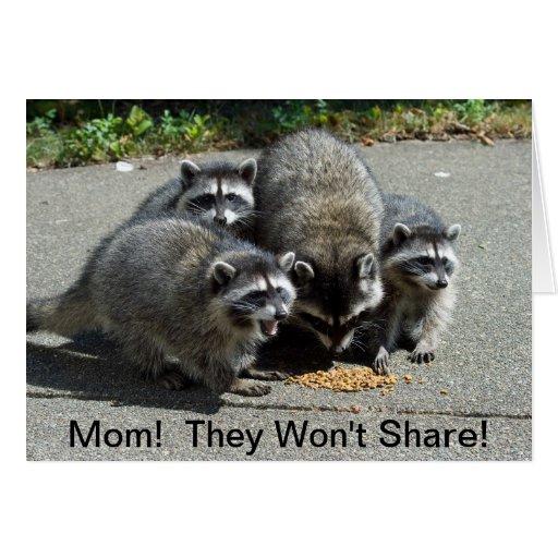 Mamá y bebés del mapache felicitacion