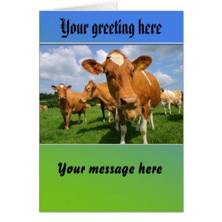 Manada de la tarjeta de felicitación de las vacas