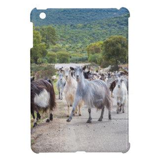 Manada de las cabras de montaña que caminan en el