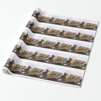 Manada de lobos enojada papel de regalo