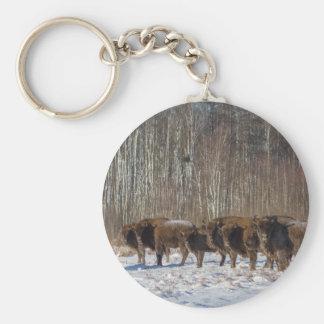 Manada del bisonte llavero redondo tipo chapa