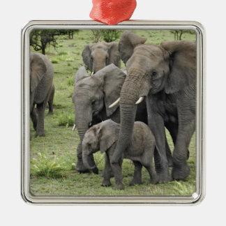 Manada del elefante africano, africana del Loxodon Ornamento De Navidad