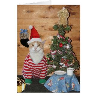 Mañana de navidad divertida del gato/del gatito tarjeta de felicitación