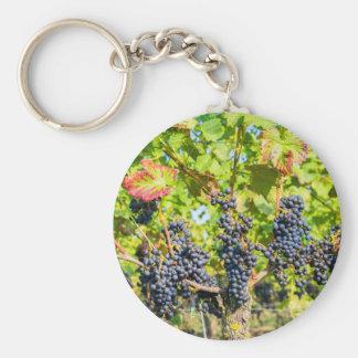Manojos azules colgantes de la uva en viñedo llavero redondo tipo chapa