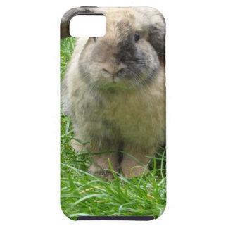 Manosee el conejo funda para iPhone SE/5/5s