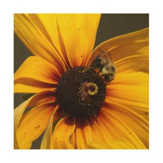 Manosee la abeja, impresión de madera de la foto