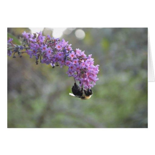 Manosee la abeja tarjeta