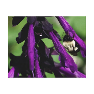 Manosee la abeja y la flor, impresión envuelta de