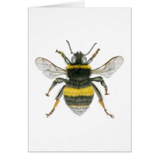 Manosee la tarjeta de felicitaciones de la abeja
