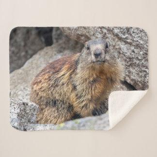 Manta alpina de Sherpa de la marmota