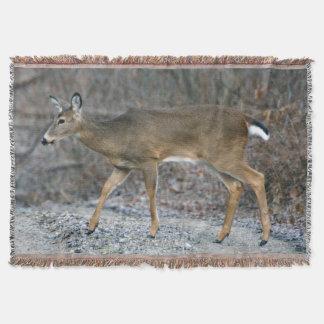 Manta Blanco-Atada del tiro de los ciervos