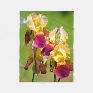 Manta Polar Manta colorida del iris