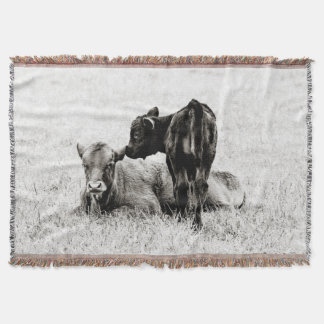 Manta negra y blanca adorable del tiro de la vaca