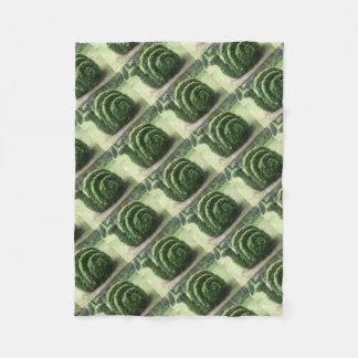 Manta Polar Arbusto ornamental del caracol de jardín del verde