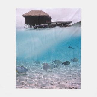 Manta Polar El mar azul tropical de Maldivas se aventura los