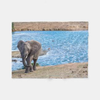 Manta Polar Elefante en el lago