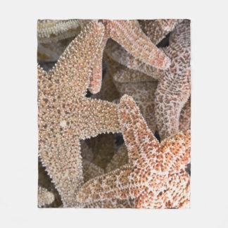 Manta Polar Estrellas de mar todo alrededor