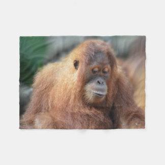 Manta Polar Orangután lindo