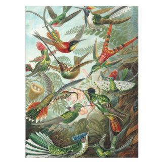 Mantel 12 pájaros americanos del tarareo crían pintado