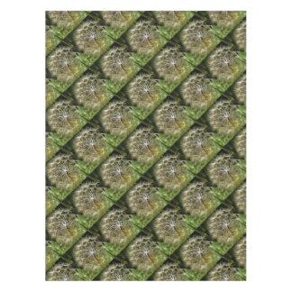 Mantel Salsifí de la flor del Tragopogon