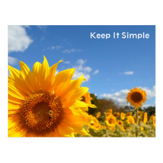 Mantenga simple con los girasoles postal