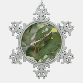 Mantis religiosa adorno