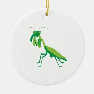 Mantis religiosa ornamente de reyes