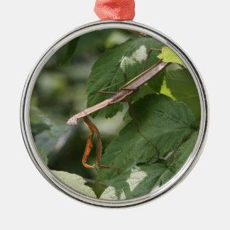 Mantis religiosa adorno navideño redondo de metal