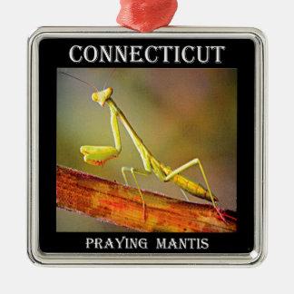 Mantis religiosa de Connecticut Adorno Cuadrado Plateado