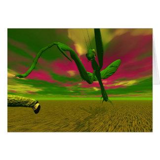 Mantis religiosa tarjetas
