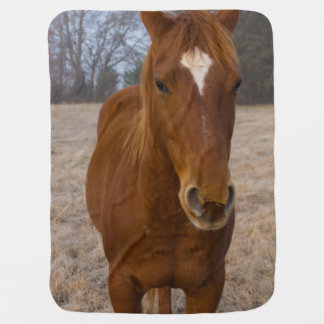 Mantita Para Bebé Actitud del caballo