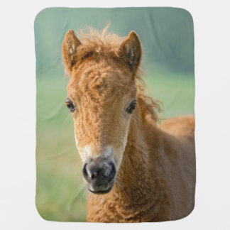 Mantita Para Bebé Foto frontal linda de la cabeza de caballo del
