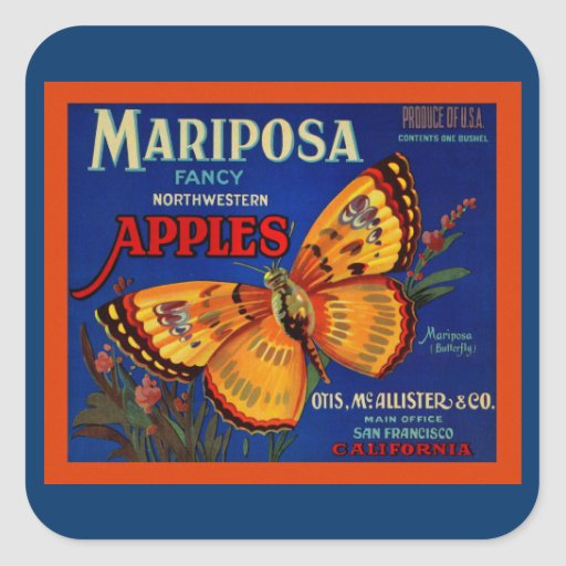 Manzanas de Mariposa Calcomanias Cuadradas