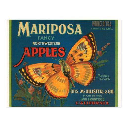 Manzanas de Mariposa Tarjeta Postal