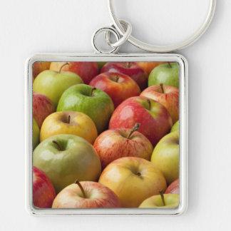 Manzanas - maduras y coloridas llavero cuadrado plateado